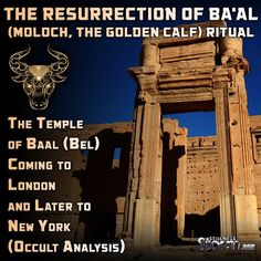 Stillness in the Storm : The Temple of Baal (Bel) Coming to London and Late...