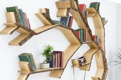 The Shelf- Imagine a baron landscape with one tree surviving against the elements. Our Windswept Oak tree shelf design is inspired by the unusual lines taken from trees that grow in an open windy climate, one that has shaped their character over many years. This large tree shelf is great as a standalone wall feature or a large bookcase that breaks the mould of tradition! Available in our standard range of finishes and shown here in Oiled Bark Edge.  Small design alterations are usually free…