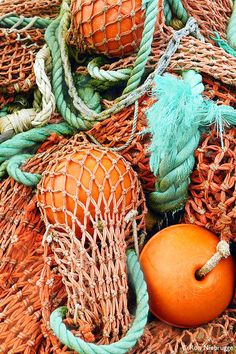 Coral fishing nets