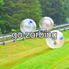 Go Zorbing! Aquad-Zorbing! Hydo-Zorbing! Sphereing