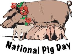 national pig day 2015 - Google Search
