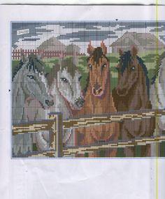 Koně v ohradě 2