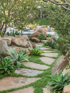 Garden Ideas & 7 Pro Tips, Courtesy Of Hollywood's Go-To Guy Lawn And Landscape, Landscape Design, English Cottage, Seaside Garden, Specimen Trees, California Garden, Mediterranean Garden, Garden Paths, Dry Garden