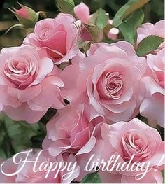 90 Happy Birthday Sister Quotes, Funny Wishes, Cake Images Collection - Geburtstag Birthday Wishes And Images, Happy Birthday Wishes Cards, Happy Birthday Pictures, Happy Birthday For Her, Happy Birthday Flower, Happy Birthday Funny, Birthday Ideas, Happy Birthday Typography, Funny Wishes