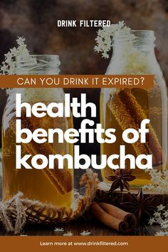 Kombucha is technically a fermented tea. While some find its taste to be off-putting, others swear by its health benefits. What are those?  Click to know more.