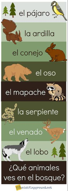 Spanish Vocabulary Infographics - Spanish Playground Spanish vocabulary for common themes such as animals, fruit, school supplies, household objects, seasons and holidays. Infographics with text and pictures. Vocabulary In Context, Vocabulary Instruction, Spanish Vocabulary, Spanish Grammar, Spanish Language Learning, Teaching Spanish, Spanish Alphabet, Spanish Classroom, Teaching French