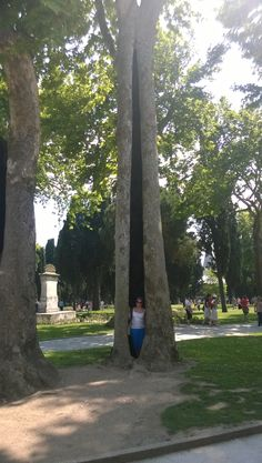 Woman emerges from tree after 60yrs, Topkapı Palace grounds.