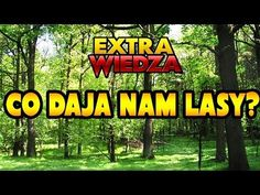 ExtraWiedza - Co dają nam lasy? Rhymes For Kids, Montessori Materials, Youtube, Education, Film, Geography, Speech Language Therapy, Polish, Studying