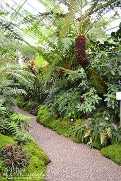 38 Großartige Bilder Zu Botanischer Garten München