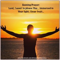 Evening Prayer: Lord, I want to please You... immersed in Your light, I bear fruit... #eveningprayer #instaquote #quote #seekgod #godsword #godislove #gospel #jesus #jesussaves #teamjesus #LHBK #youthministry #preach #testify #pray #light #fruit #love