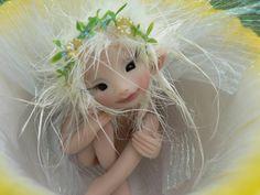 Daffodil Teacup Fairy