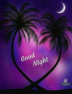 Good night sister and all,have a peaceful sleep ,God bless xxx❤❤❤✨✨✨🌙 Good Morning Sister Quotes, Good Night Prayer Quotes, Good Night Quotes Images, Sweet Good Night Messages, Romantic Good Morning Messages, Good Night Sweet Dreams, Good Night Blessings, Good Night Wishes, Good Night Image