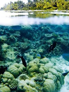 20 sights that will remind you how incredible Earth is (Part 2) | Gloholiday