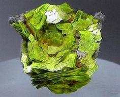 Brilliant, fluorescent yellow green crystals of uranocircite altered to meta-uranocircite. From Bergen, Vogtland, Saxony, Germany.
