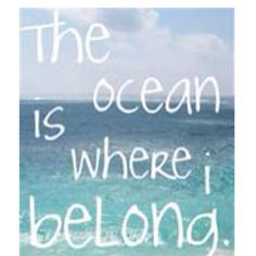 ocean is the answer
