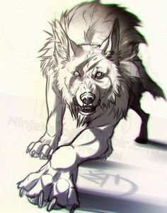 Sweet wolf on DeviantART