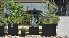 Entrance, Garden Design, Home And Garden, Green, Nature, Plants, House, Outdoor, Style