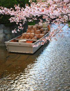 Kyoto|