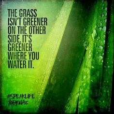 The grass isn't greener on the other side. It's greener where you water it.