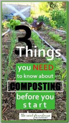 advice on what you need to know before you start composting. 3 mistakes to avoid in your compost pileGreat advice on what you need to know before you start composting. 3 mistakes to avoid in your compost pile How To Start Composting, Compost Soil, Composting At Home, Garden Compost, Garden Soil, Garden Beds, Diy Compost Bin, Urban Composting, Making Compost