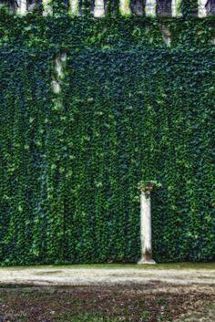 La muralla II by Sofía Serra on 500px
