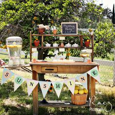 Sunshine and Citrus dessert table Spring Party, Summer Parties, Holiday Parties, Spring Summer, Vintage Garden Parties, Party Garden, Garden Birthday, Sunshine Birthday, Party Entertainment
