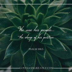 {Week 1 - Friday Post} We desperately need a shepherd, and The Lord takes that title upon himself. #David Bible Study @ LoveGodGreatly.com