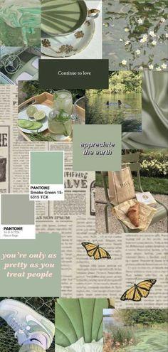Sage Green Aesthetic Wallpaper - EnJpg