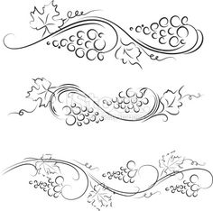 17 Best Grape Reference Images Drawings Embroidery Vines