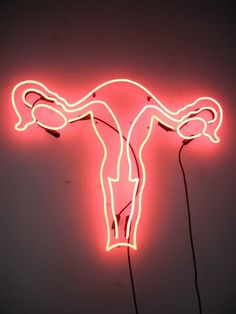 """There is no other organ quite like the uterus."" -Ina May…I think a great band name would be Neon Uterus lol Art And Illustration, Illustrations, Neon Rouge, All Of The Lights, Feminist Art, Light Installation, Neon Lighting, Light Art, Graphic"