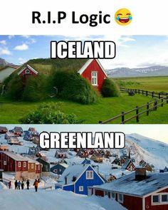Funny Meme About Iceland vs. Funny Cute, Really Funny, Troll Meme, Funny Jokes, Hilarious, Desi Jokes, Bad Memes, Grumpy Cat Humor, Funny Pins