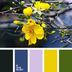 black, dark blue, lavender, yellow, green