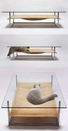 Coffee Table and cat bed in one! Ahahaha! Sitting with friends over drinks and suddenly the cat coming in to snooze. That'd be funny!
