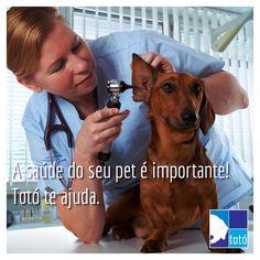 Está com dificuldade de encontrar a melhor clínica, hospital ou pet shop para o seu pet? Totó, tudo o que você precisa au alcance das suas mãos. Por: Marianne de Lazari. Imagem encontrada na Internet.