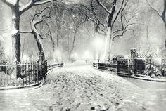 A Snowy Winter Night in Madison Square Park - New York City, NY