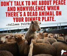 #vegan
