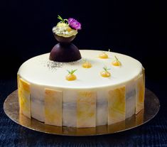 This mango and lemon entremet is exquisite, elegant and delicious! It's a real pastry masterpiece that can be made at home. Lemon Desserts, Great Desserts, Mini Desserts, Chocolate Desserts, Delicious Desserts, Dessert Recipes, Beautiful Desserts, Plated Desserts, Beautiful Cakes