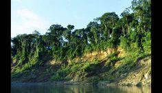 El Parque Nacional del Manu es considerado un símbolo de la biodiversidad en el Perú