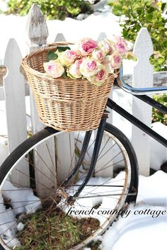 Ashley and I both want pink bikes like this with a basket in the front