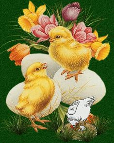 Ostern Wallpaper, Easter Poems, Just Magic, Baby Chickens, Easter Pictures, Nature Gif, Vintage Easter, Easter Crafts, Beautiful Birds