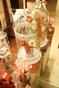 beautiful bird cages and decorative idea