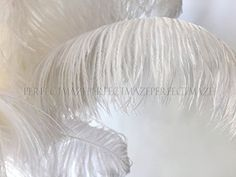 Perfectmaze 22 24 Ostrich Feather Premium Quality for Wedding Party Centerpiece Vase Decoration 50 -- Click image for more details.