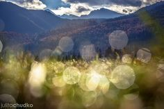 I'm A Climbing Photographer Who Loves Taking Pictures In The Polish Tatra Mountains Tatra Mountains, Call Of The Wild, Mountain Landscape, Taking Pictures, Climbing, Travel Photography, Cascades, Lacs, Nature