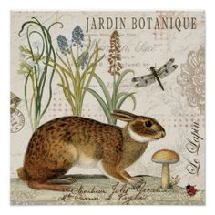 modern vintage french rabbit in the garden posters