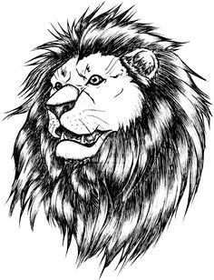 Эскизы татуировки лев. Рисунки тату