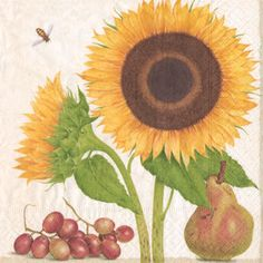 With Gertrude Hamilton's Botanical Studies, we see plant and wildlife of all seasons captured in beautiful detail.