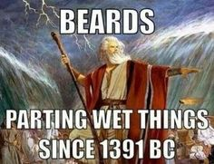Beards. Too funny not to post!