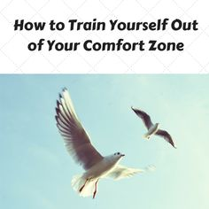 how to get out of your comfort zone http://coachmikemacdonald.com/how-to-train-yourself-out-of-your-comfort-zone/