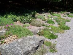 Rock Garden Landscaping   repin like comment buddhist rock garden, 2576x1932 in 1.9MB