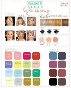 color-seasons-complexion-light-spring1.png (800×998)